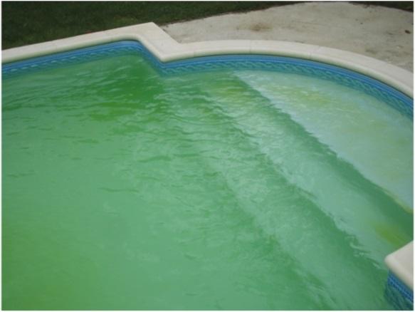 Groen bad